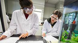 ASU a leader in undergraduate education